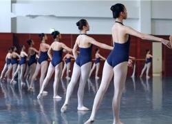 舞蹈培训学校会员管理系统软件解决方案